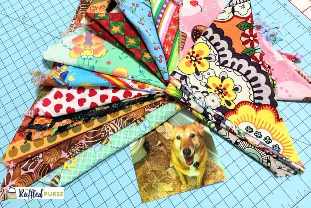 Bandannas that our dog wore.